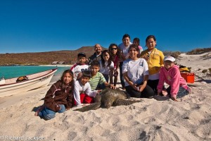 Mision Loreto Properties and SeaTurtle Monitoring