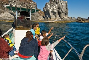 Enjoy Loreto by boat
