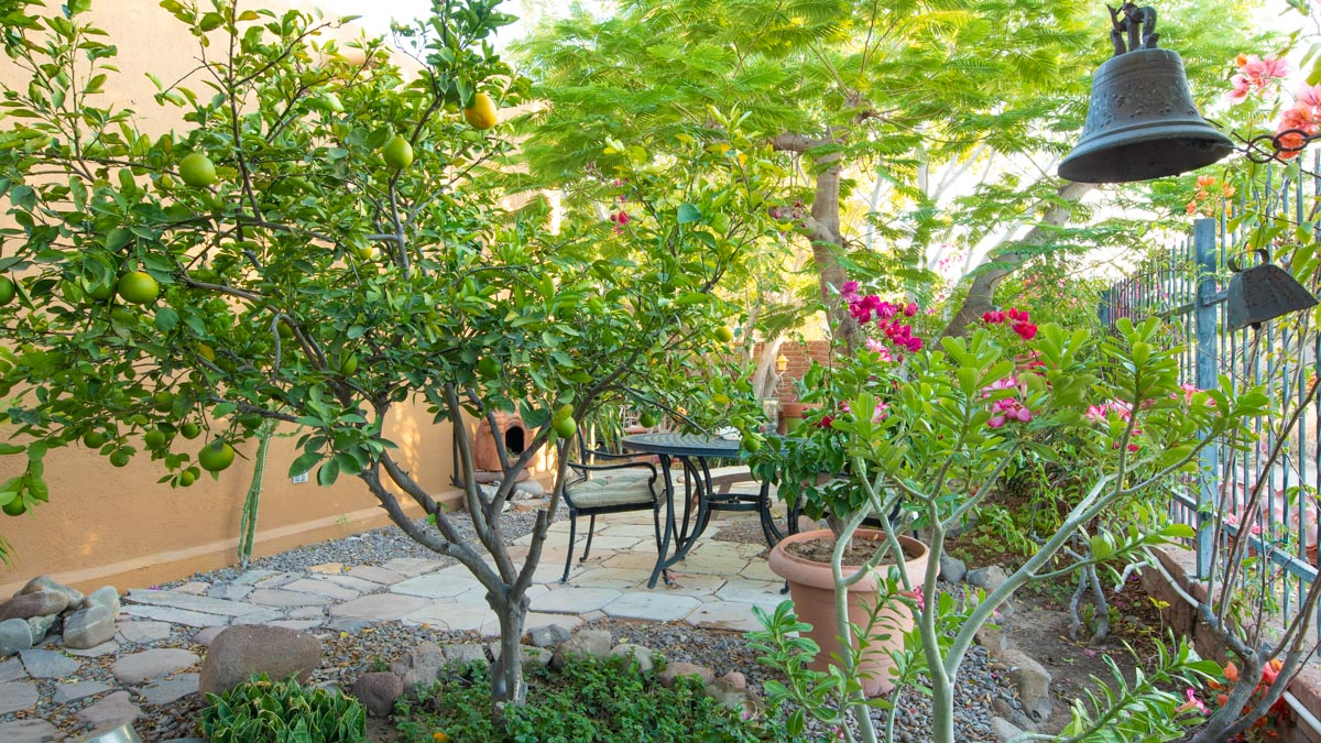One level 2 bed/1.5 bath home: front garden south