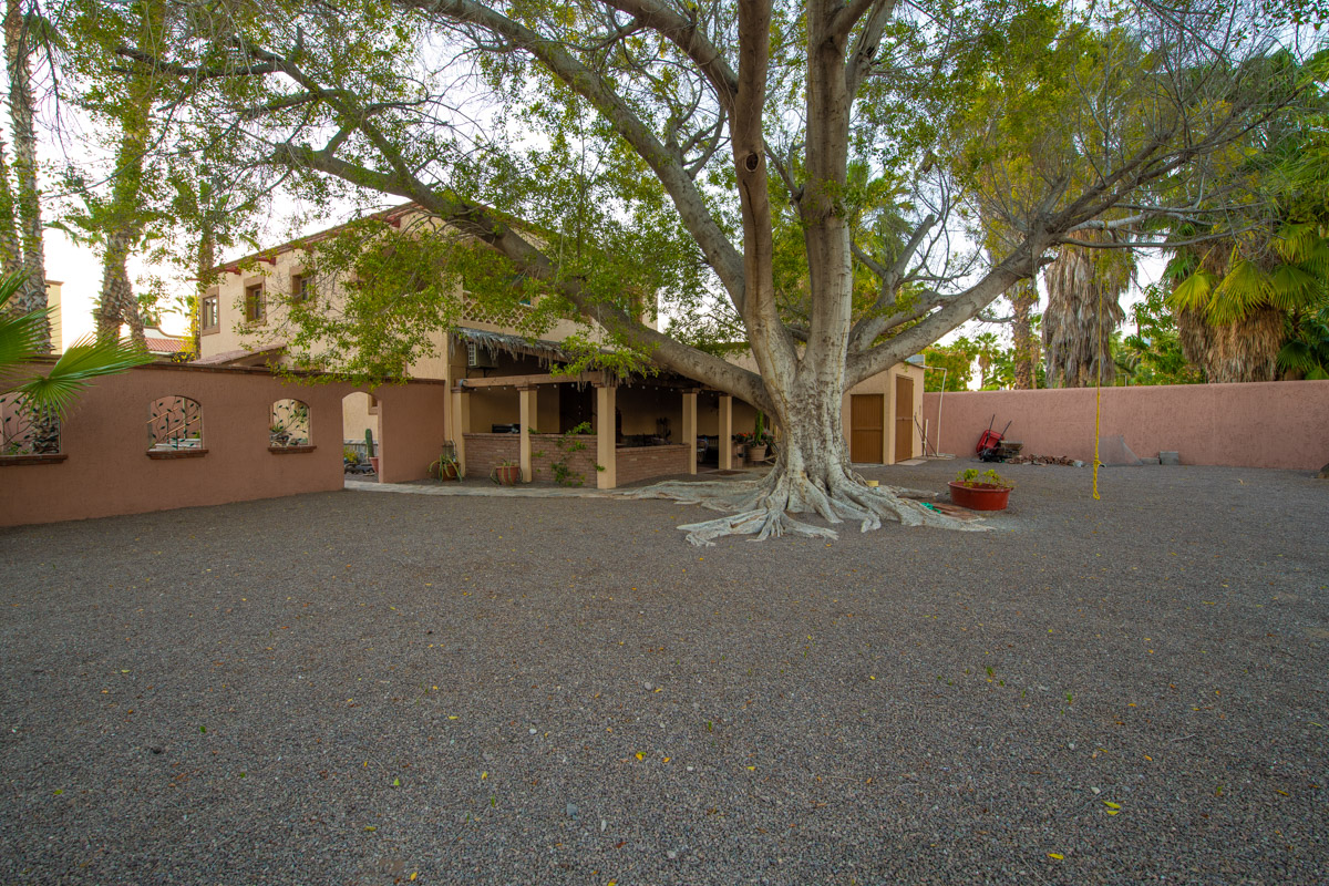 Beautifully restored four bedroom adobe home Backyard