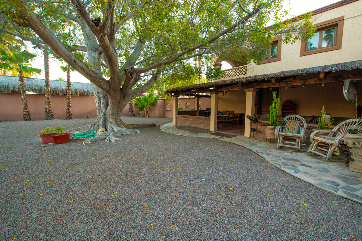 Beautifully restored four bedroom adobe home Large back yard