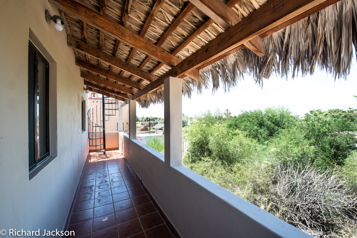 2 Bed 2 Bath 2 Blocks Away from the Beach in Loreto: back porch