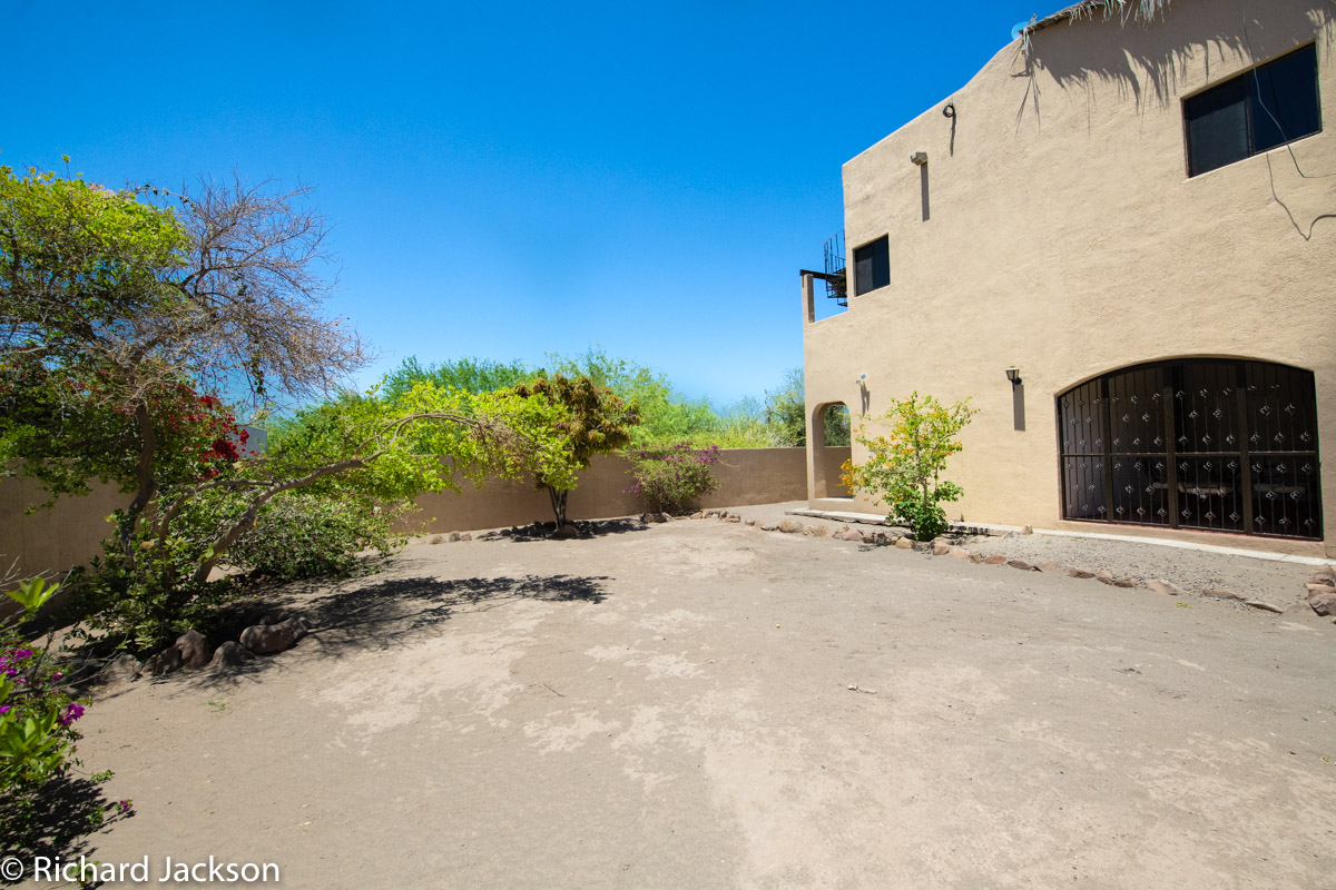 2 Bed 2 Bath 2 Blocks Away from the Beach in Loreto: yard with fruit trees