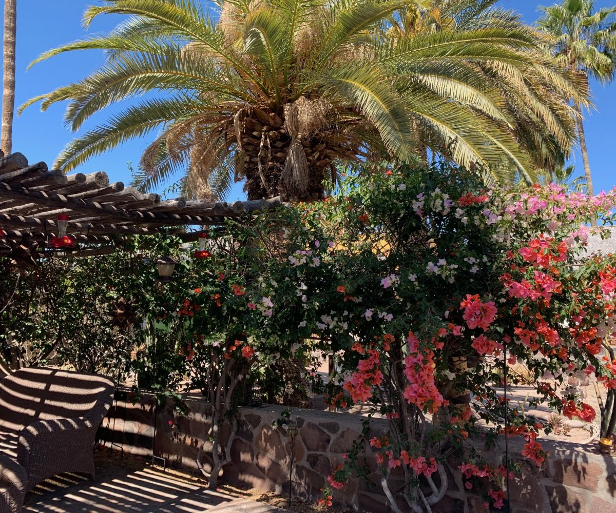 2 bed/2bath casa in private community: flowers on private patio.